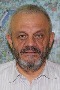 Goran J Mandic